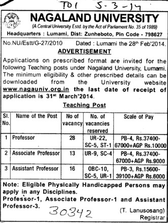 Asstt Professor (Nagaland University)