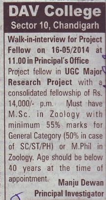 Project Fellow (DAV College Sector 10)
