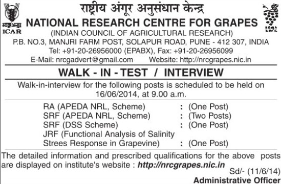 JRF and SRF (National Research Centre for Grapes (NRCG))