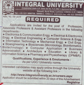 Asstt Professor for ECE and CSE (Integral University)