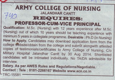 Professor cum Vice Principal (Army College of Nursing)