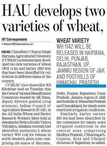 HAU develops two varieties of wheat (Ch Charan Singh Haryana Agricultural University (CCSHAU))