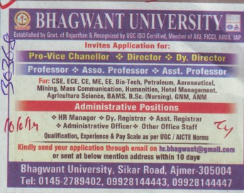 Pro Vice Chancellor and Deputy Director (Bhagwant University)