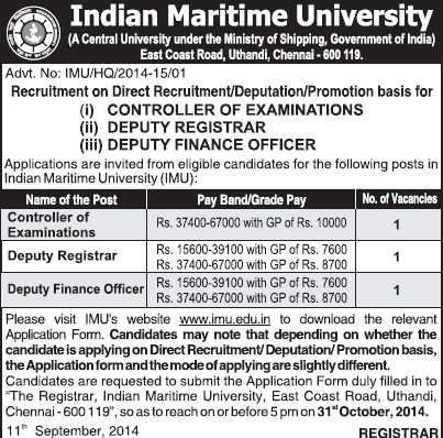 Deputy Finance Officer (Indian Maritime University)