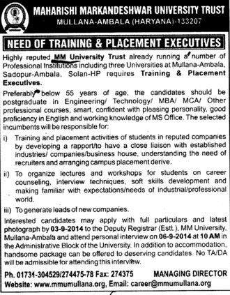 Training and Placement Executives (Maharishi Markandeshwar University)