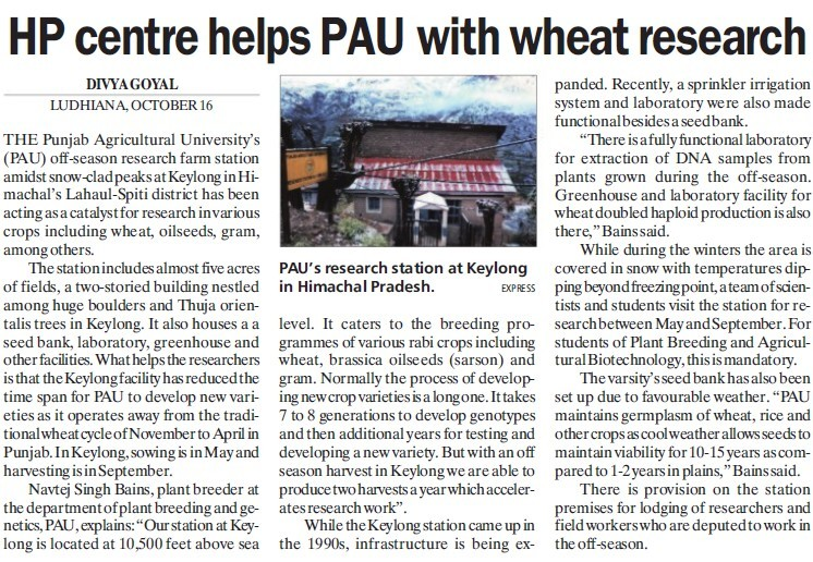 HP Centre helps PAU with wheat research (Punjab Agricultural University PAU)