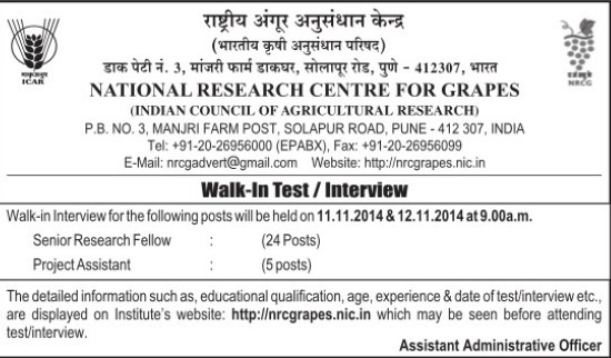 Senior Research Fellow (National Research Centre for Grapes (NRCG))