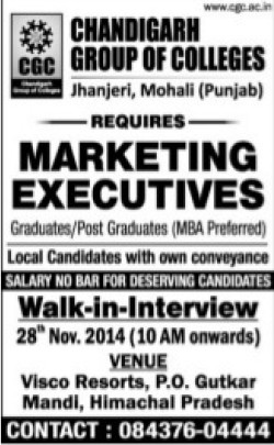 Marketing Executive (Chandigarh Group of Colleges)
