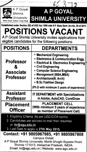 Placement Officer (APG Shimla University)