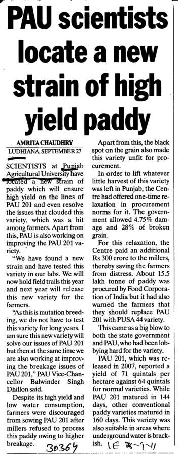PAU Scientists locate a new strain of high yield paddy (Punjab Agricultural University PAU)