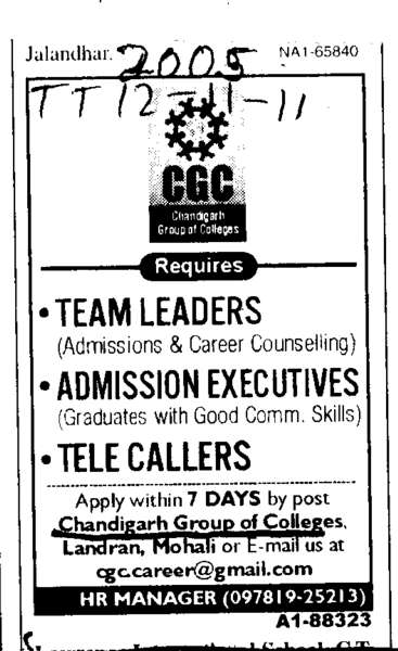 Teams Leader (Chandigarh Group of Colleges)