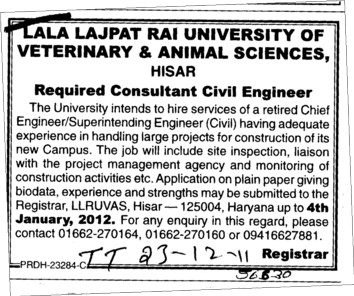 Required Consultant Civil Engineer (Lala Lajpat Rai University of Veterinary and Animal Sciences)