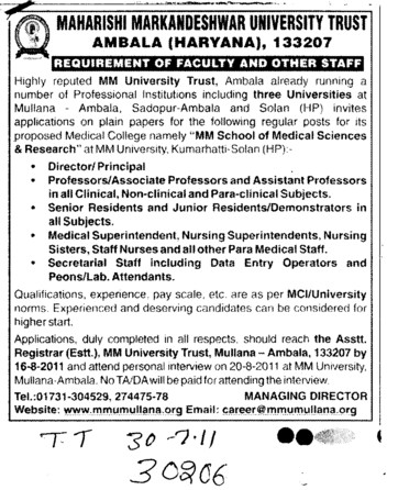 Director and Principal (Maharishi Markandeshwar University)