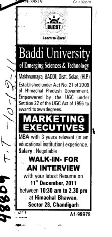 Marketing Executives (Baddi University of Emerging Sciences and Technologies)