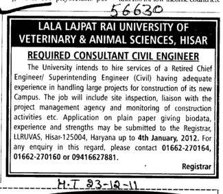 Consultant Civil Engineer (Lala Lajpat Rai University of Veterinary and Animal Sciences)