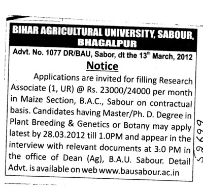 Research Associate on Contract basis (Bihar Agricultural University)
