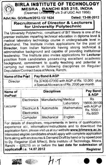 Director and Lecturer (Birla Institute of Technology (BIT Mesra))