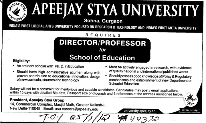 Director and Professor (Apeejay Stya University)