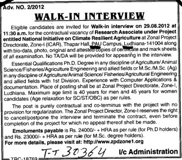Research Associate (Punjab Agricultural University PAU)