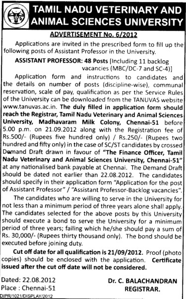 Assistant Professor (Tamil Nadu Veterinary and Animal Sciences University, MADRAS VETERINARY COLLEGE)