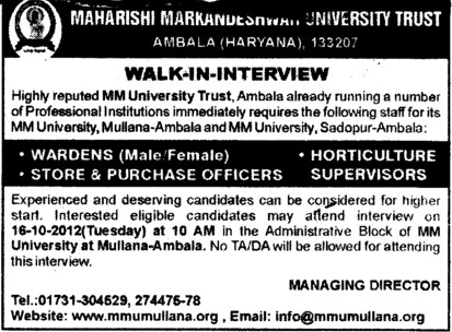 Store and Purchase Officer etc (Maharishi Markandeshwar University)