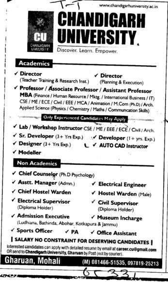 Director, Professor, Designer and Modeller etc (Chandigarh University)