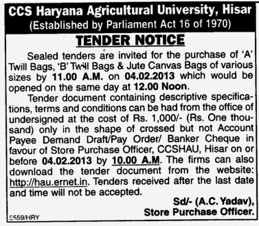 Twill Bags and Canvas Bags (Ch Charan Singh Haryana Agricultural University (CCSHAU))