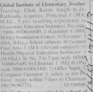 Principal and Lecturer (Global Institute of Education)