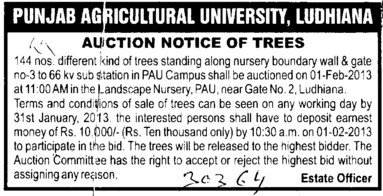 Auction Notice for Trees (Punjab Agricultural University PAU)