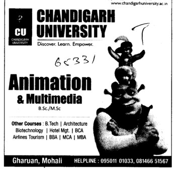 BSc and MSc in Amination (Chandigarh University)