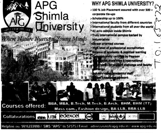 100 percent job placement (APG Shimla University)