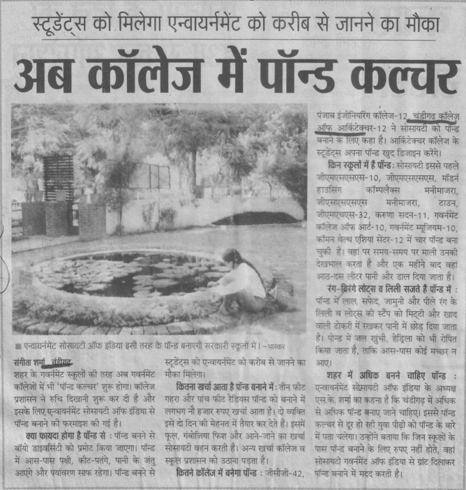 Pond culture in college (Chandigarh College of Architecture)