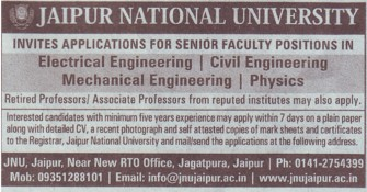 Asso Professor (Jaipur National University)