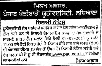 Auction for Store article on guest plant (Punjab Agricultural University PAU)