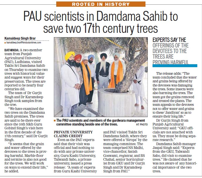 Scientist in Damdama Sahib to save two 17th century trees (Punjab Agricultural University PAU)