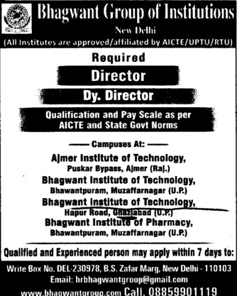 Deputy Director (Bhagwant Institute of Technology)