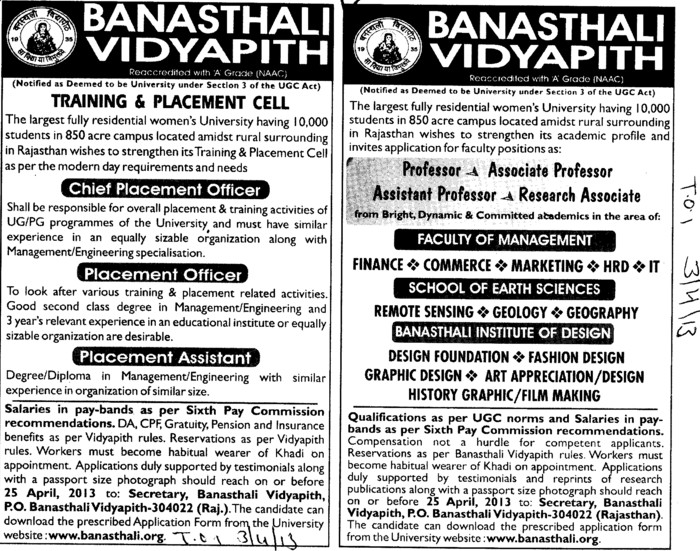 Placement Officer (Banasthali University Banasthali Vidyapith)