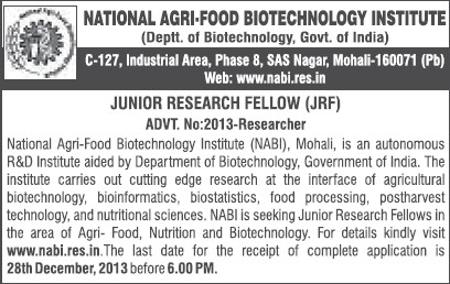 Junior Research Fellow (National Agri Food Bio Technology Institute (NABI))