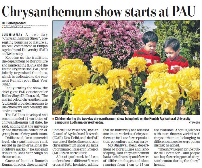 Chrysanthemum show starts at PAU (Punjab Agricultural University PAU)