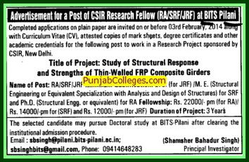 Junior and Senior Research Fellow (Birla Institute of Technology and Science (BITS))