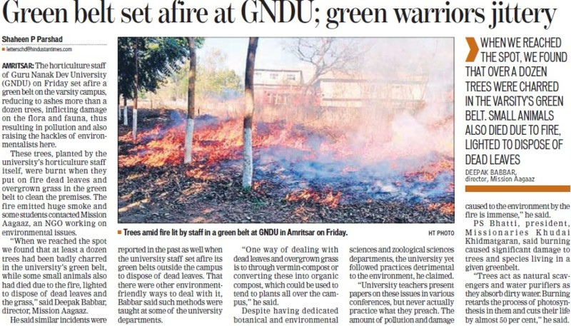 Green belt set afire at GNDU, green warriors jittery (Guru Nanak Dev University (GNDU))