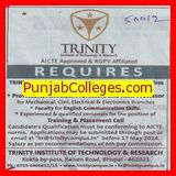 Associate Professor for English (Trinity Institute of Technology and Resarch)