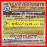 MBA and MCA programme (Apeejay Institute of Management)